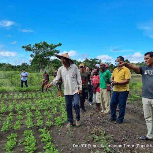 Maknai Hari Krida Pertanian di Tengah Transformasi Industri 4.0, PKT Percepat Inovasi Majukan Pertanian Modern