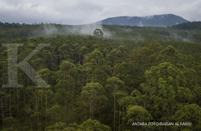Kebijakan di kawasan hutan masih jadi hambatan reforma agraria