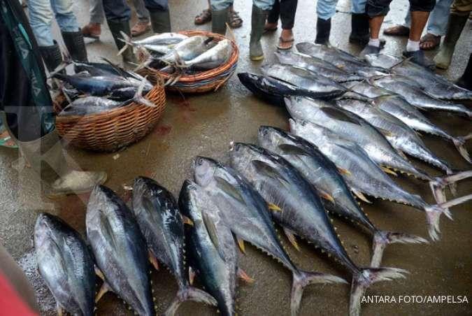 Pemerintah dongkrak ekspor pengolahan ikan di tahun 2020