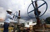 PT Barito Pacific Tbk (BRPT) Getol Mengerjakan Proyek Energi, Simak Rencana Mereka
