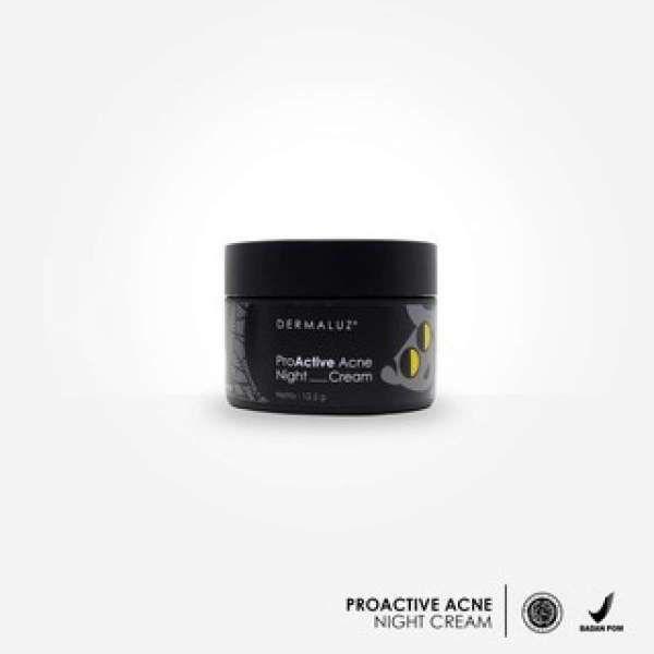 Dermaluz Proactive Acne Night Cream