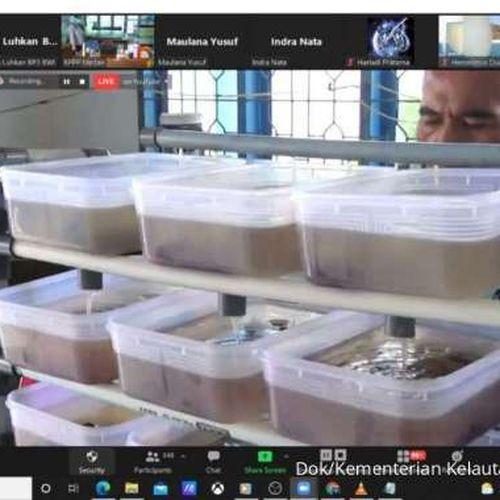 Dukung LIN, KKP Gelar Pelatihan Budidaya Ikan Sistem Bioflok
