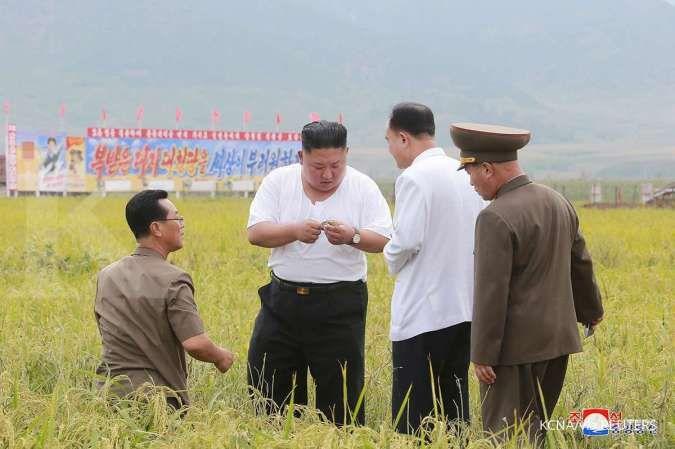 Hanya karena sisakan makanan, warga Korea Utara akan dihukum