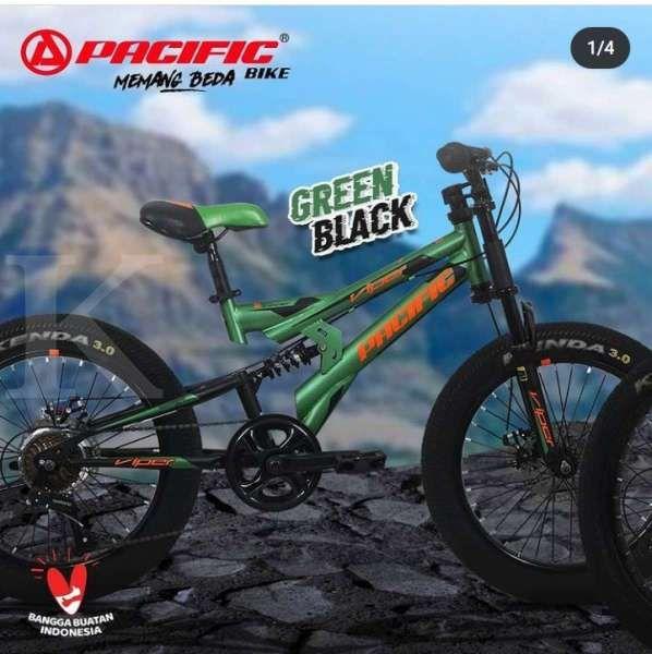 Pacific Viper 3.0
