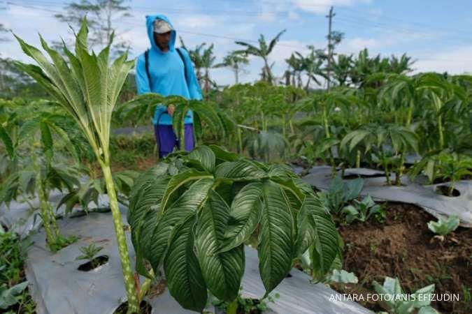 Anggota DPR ini dukung Kementan bekali petani lewat Bimtek