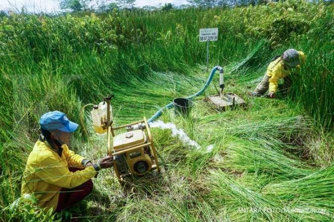 BRG ajak pemerintah desa ikut jaga infrastruktur pembasahan gambut