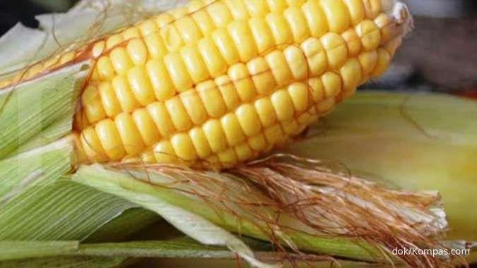 Jarang diketahui! ini manfaat rambut jagung bagi kesehatan