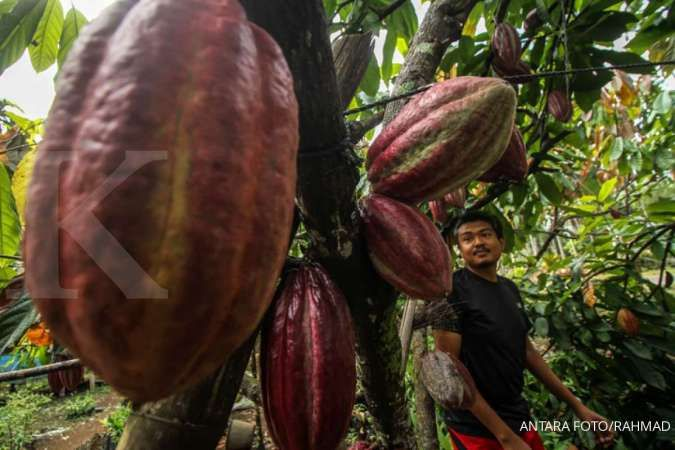 Teknologi cerdas ini dinilai bisa pacu nilai tambah kakao dan kopi
