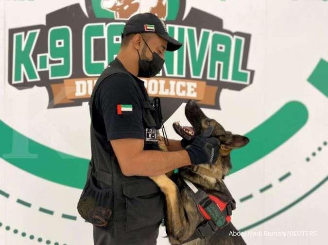 Uni Emirat Arab tugaskan anjing pelacak Covid-19 di bandara