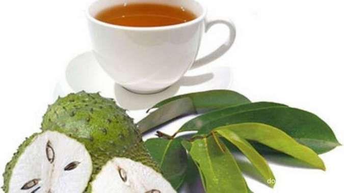 4 Manfaat daun sirsak, jadi cara meningkatkan imun tubuh