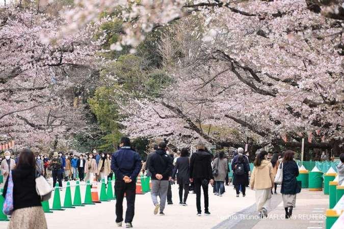 Ada beasiswa dari pemerintah Jepang untuk S1, bebas biaya kuliah dan dapat tunjangan