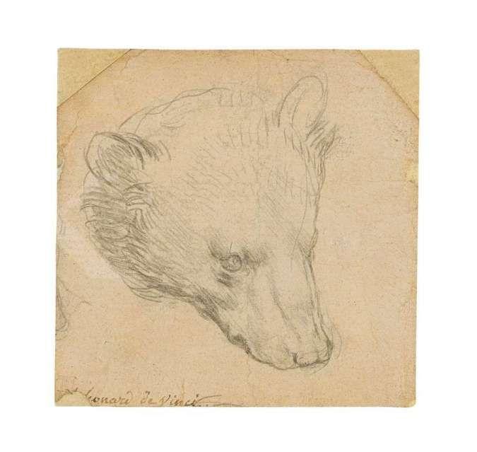 Lukisan kepala beruang karya maestro Leonardo da Vinci ini tembus Rp 238 miliar