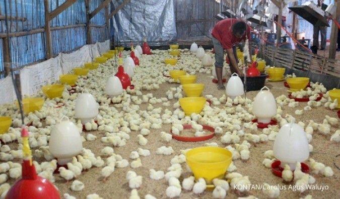 Charoen akan patuhi larangan penggunaan antibiotik