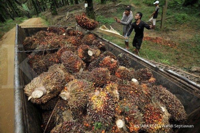 BPDP kelapa sawit targetkan pungutan ekspor sawit 2018 capai Rp 11 triliun